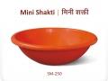 Mini Shakti