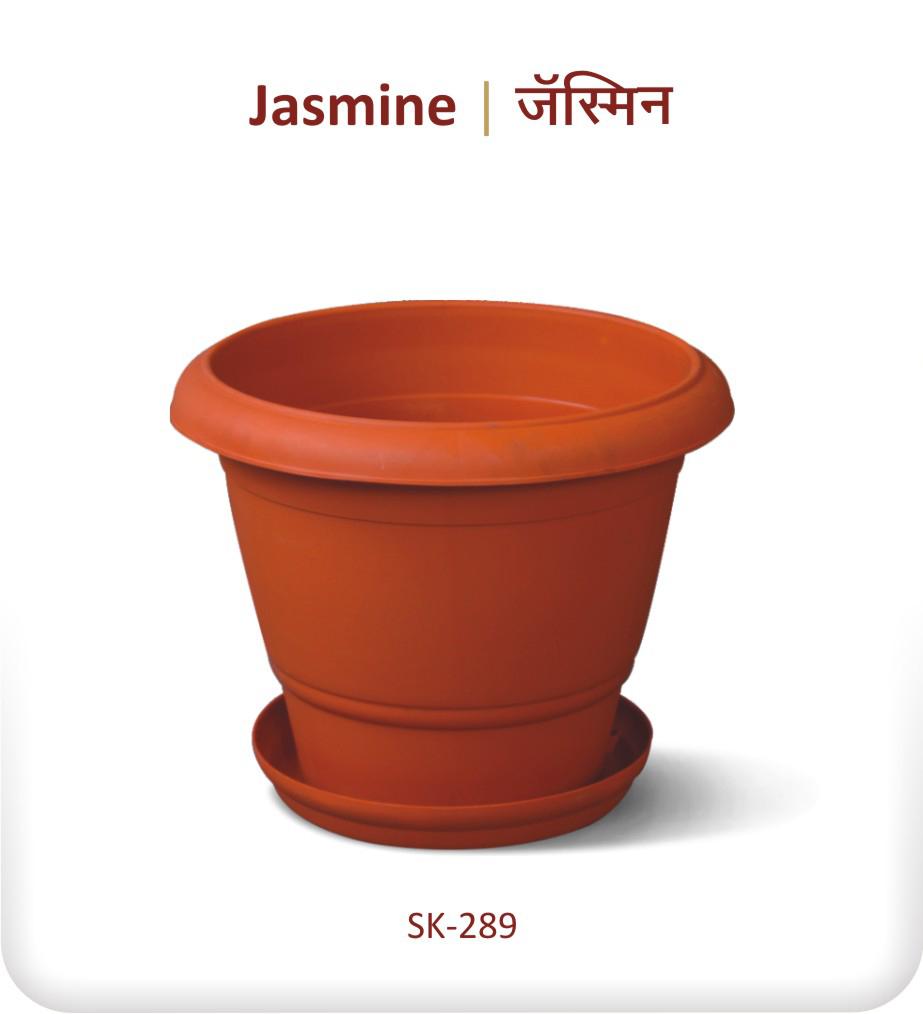 Planter Jasmine