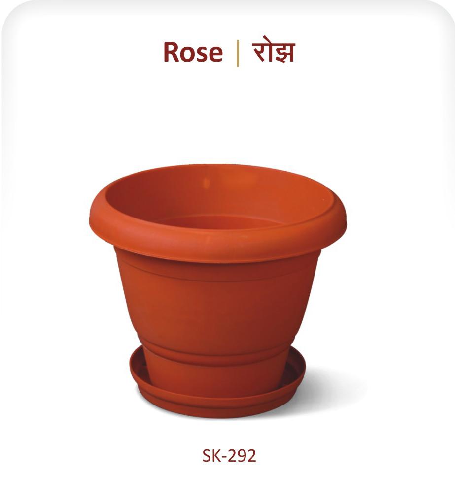 Planter Rose